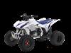 model:TRX450ER